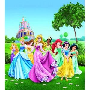 Disney Hercegnők matt poszter (180 cm x 202 cm)