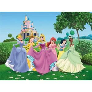 Hercegnők poszter (360 cm x 255 cm)